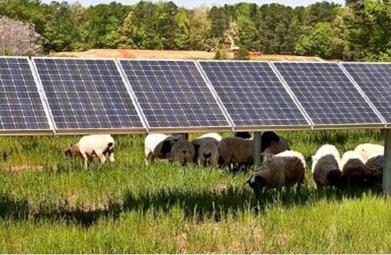 HEC-e dhe parqe fotovoltaikë – Pesë kërkesa të reja në MEI, ja vlera e investimit, Nertila Maho/SCAN, 28/04/2017