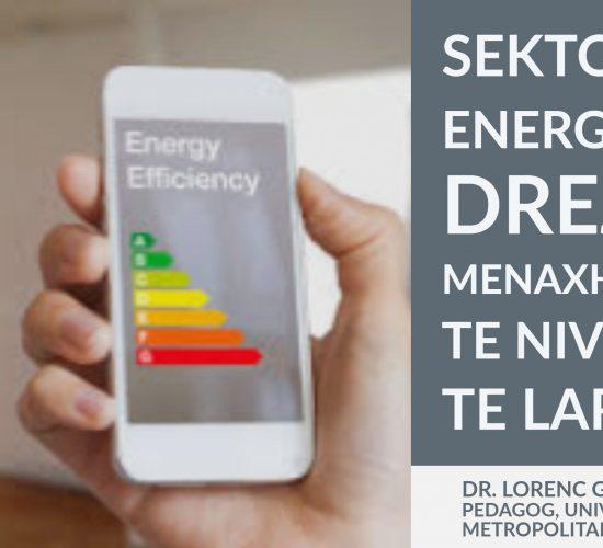 Sektori i energjisë drejt menaxhimit te nivelit te larte